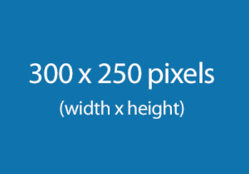300 x 250 pixel rectangle
